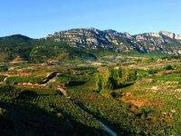 paisaje del entorno