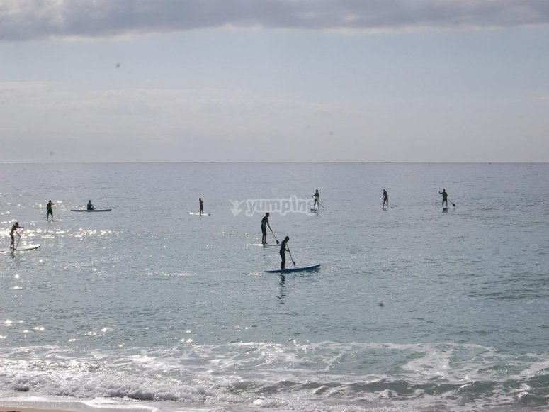 Enjoy the paddle Surf with us