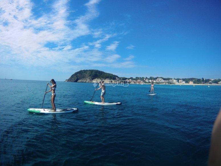 Alquiler equipo de paddle surf