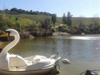 访问我们的脚踏船在lagosafari自然保护区peq5