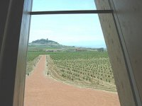 View of the vineyards from the inside