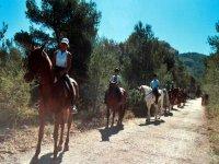 Paseo a caballo en Alicante