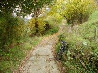 Aparca tu bicicleta y disfruta de la naturaleza