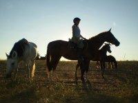 Apasionate con el mundo de los caballos