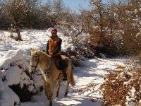 Rutas a caballo en nieve