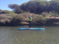桨在水中科尼尔