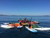 Grupo de tablas de paddle surf