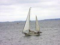 在船上航行