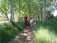 Ruta a caballo en Valladolid