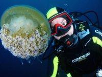 Observando la fauna marina