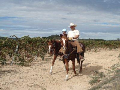 Rancho Mas del Santo