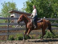 probando al caballo