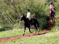 ruta con los caballos