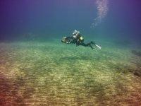 Explore the sea bottom