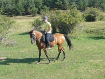 Centro de Equitacion Vall de Manyanet