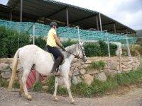 Disfruta de las mejores excursiones a caballo