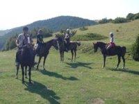 Rutas a caballo por la zona