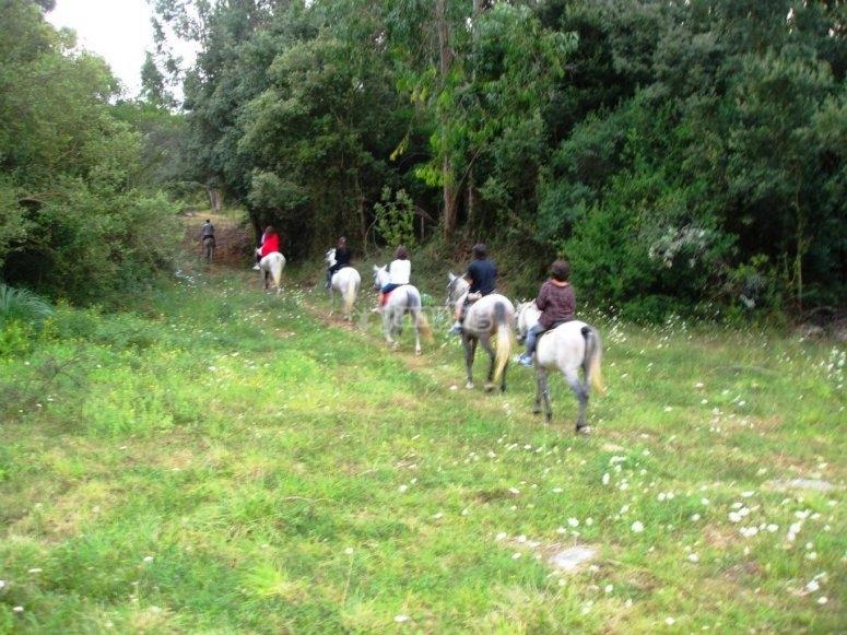 A caballo por el parque natural de Noja