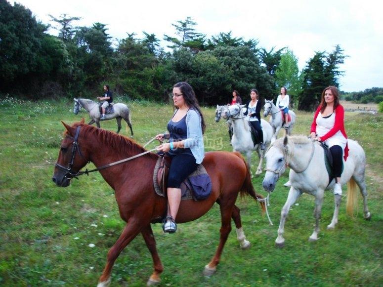 Rutas por el campo a caballo