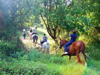 Horse riding tour for 1 hour. Cantabria