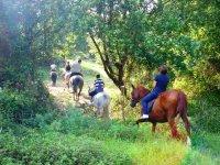 Ruta a caballo por Noja