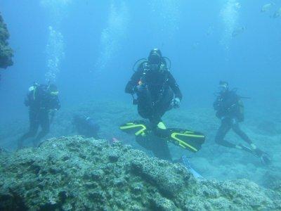 Pack de 5 Inmersiones de buceo en la Costa Adeje