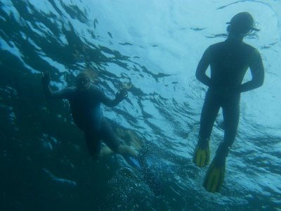 Open Water Diver PADI course in Adeje Coast