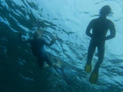 Curso de buceo PADI Open Water Dive Costa Adeje