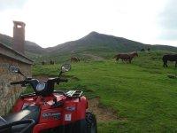 Salidas en quad por el Valle de Tena