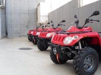 Nuestro quads