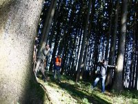 tiro en el bosque