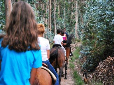 Horse riding in San Miguel de Meruelo - 3 hours