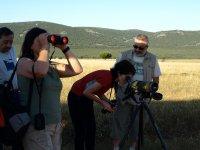 Osservazione della fauna selvatica
