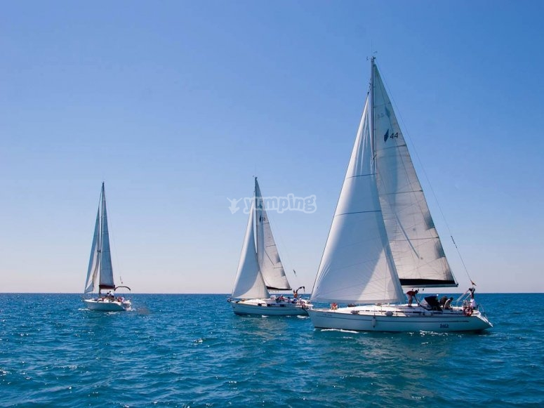 Navegando en veleros