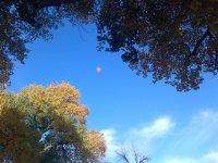 在塞戈维亚提供气球飞行