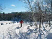 Strada invernale con racchette da neve