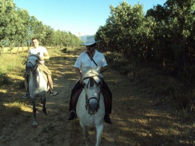 Despedidas Segovia Rutas a Caballo
