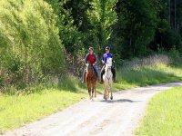 小团体骑马游览