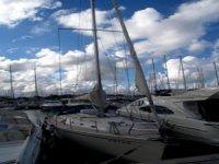 Motor or sail