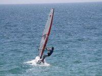 巴达洛纳的海洋日