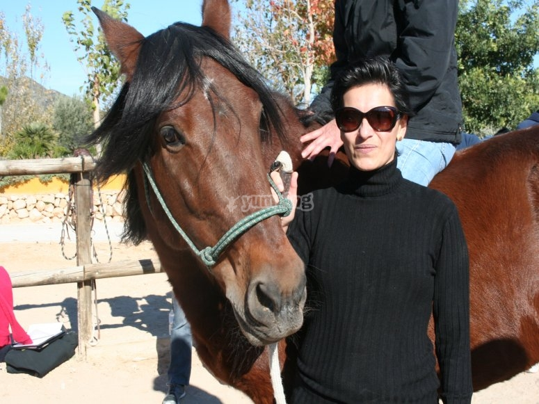 Directora con caballos
