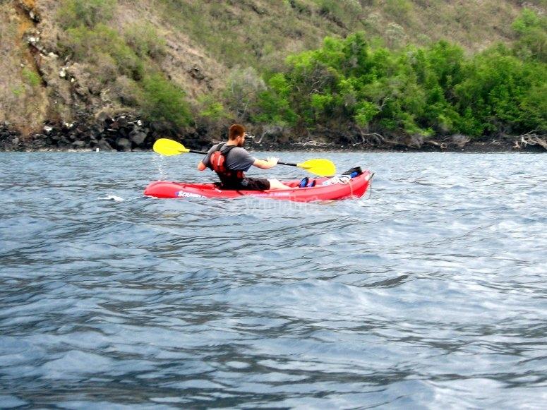 Paddling in the canoe