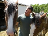 Introducing us to the horses