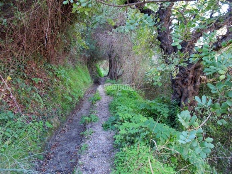 Hiking routes on the mountain
