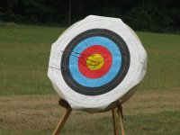 La diana con varias flechas