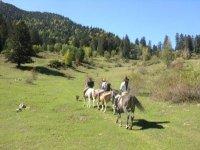 Excursiones a caballo por entornos naturales
