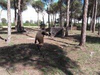 Jugador corriendo agachado