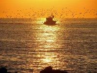 马拉加手工捕鱼