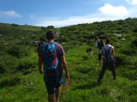 Ruta botánica por Santillana