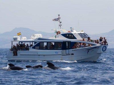 Alquiler de barco en Tarifa 2 horas temporada alta